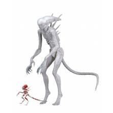 Figura Neomorph. Alien...